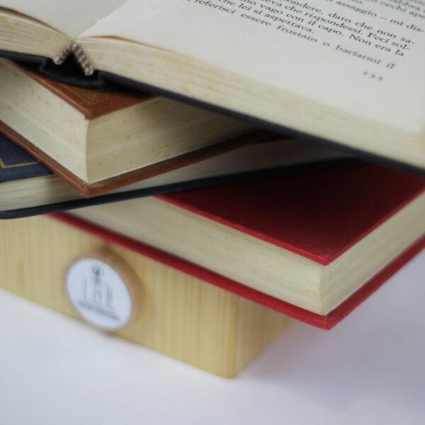 LibroAperto3_Particolare01